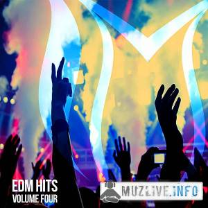 EDM Hits Vol.4 (MP3)