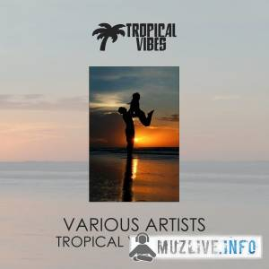 Tropical Vibes vol. 6 MP3 2018
