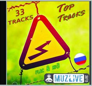 Top Tracks RU Vol 6 (FLAC)