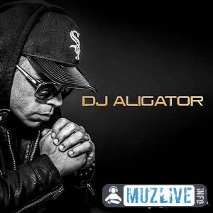 DJ Aligator - Best Of MP3 2020
