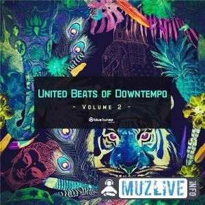 United Beats of Downtempo Vol. 2 MP3 2020