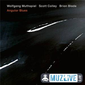 Wolfgang Muthspiel, Scott Colley, Brian Blade - Angular Blues (FLAC)