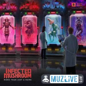 Infected Mushroom - More Than Just a Name MP3 2020
